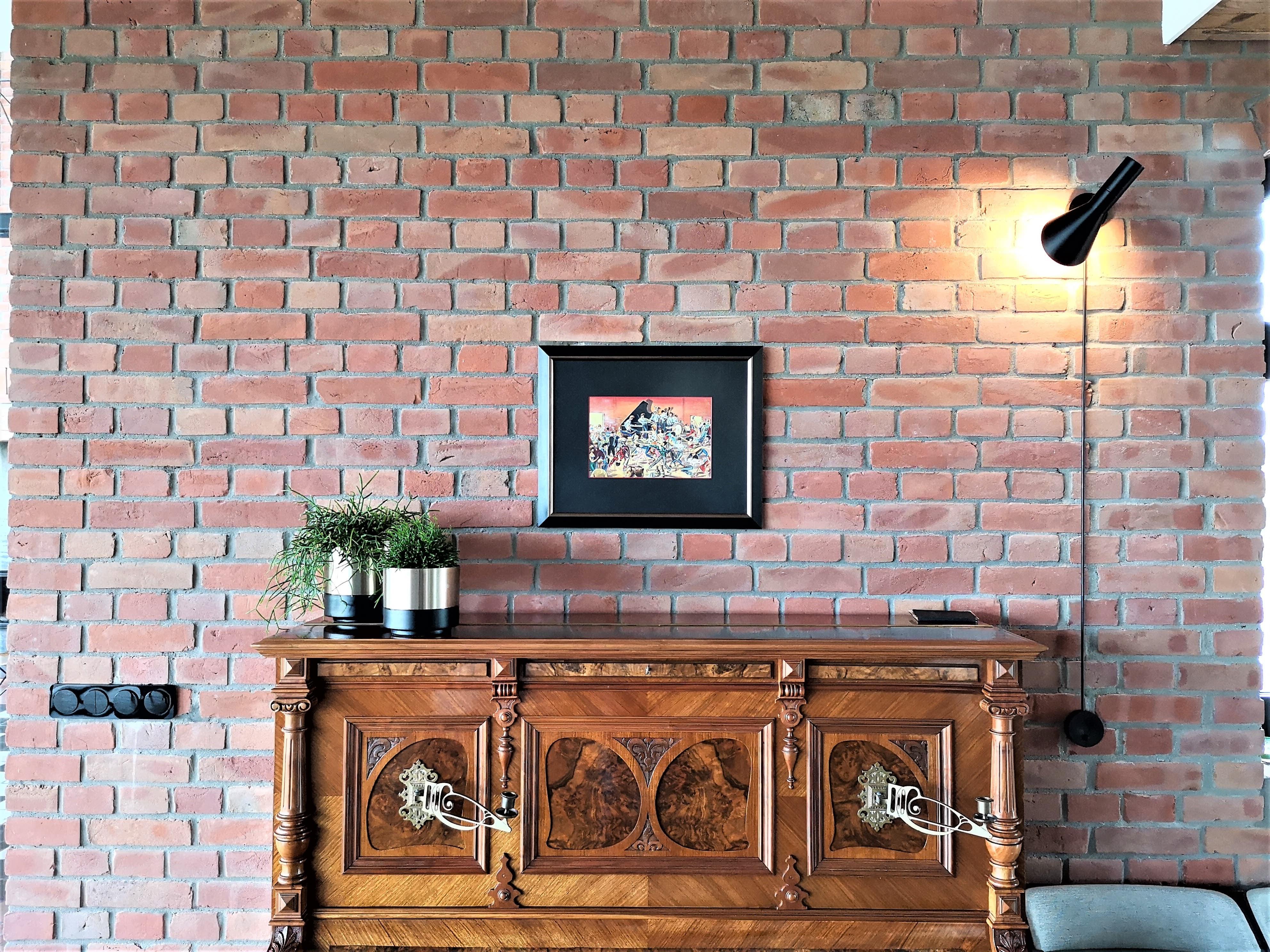 Salon z cegły